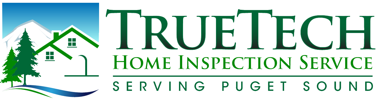 True tech Logo